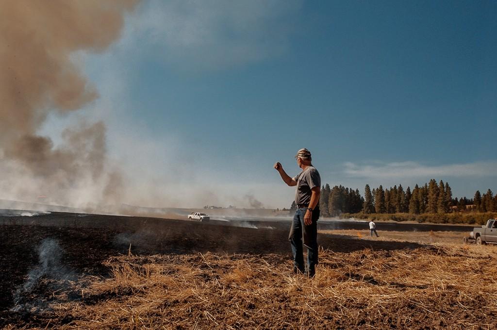 burn_field